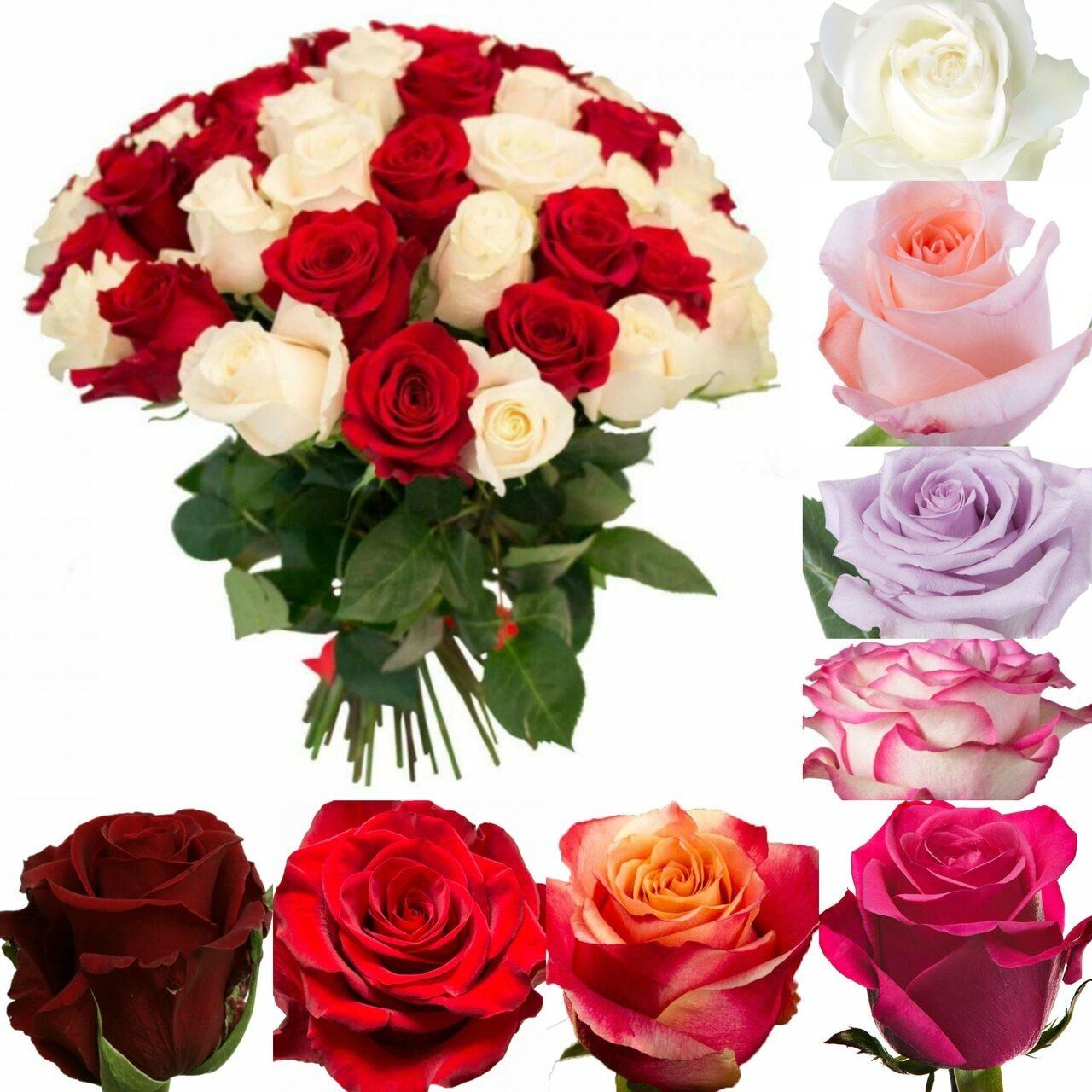 Цветы с доставкой из эквадора, цветов нижний
